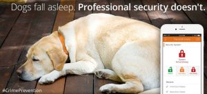 security systems raleigh